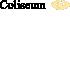 COLISEUM - TREVI-COLISEUM SRL