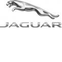 Jaguar - MENRAD
